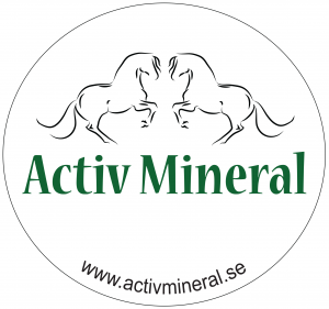 activehink (1)